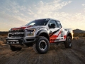 2017 Ford raptor 8
