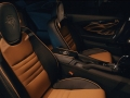 2017 Pontiac Bandit Trans Am 8